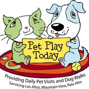Pet Play Today Sitting, Mountain View CA