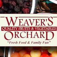 Weaver's Orchard, Morgantown PA