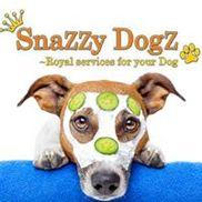 Snazzy Dogz, Peoria AZ