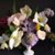 Enchanted Florist, Austin TX