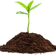 Organic Waste Management, LLC, Malden MA