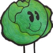 Lettuce Organize® LLC, Morton Grove IL
