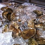 Wellfleet Mother Shuckers, Wellfleet MA