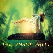 The SmartSheet, Brandon FL