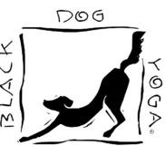 black dog yoga sherman oaks