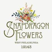 Snapdragon Flowers, Philadelphia PA