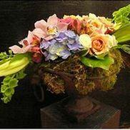 Toluca Lake Flower Shop, North Hollywood CA
