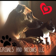 Growls and Meows LLC, Youngstown OH
