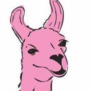 The Pink Llama Gallery, Cedarburg WI