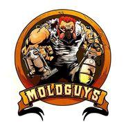Moldguys Restoration LLC, EAST BRIDGEWATER MA