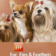 Fur Fins & Feathers 301-840-1989 www.fffpetsitting.com, Rockville MD