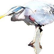 Blue Heron Art Enterprises, Victoria BC