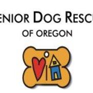 Senior Dog Rescue of Oregon (SDRO), Philomath OR
