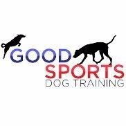 Dog Training Marlborough Ma