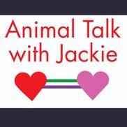 Animal Talk with Jackie, Wilmington DE