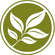 Acupuncture & Herbal Therapies, Saint Petersburg FL