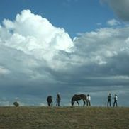 In Sync with Horses, LLC, Abiquiu NM