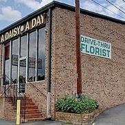 A Daisy A Day, Winston Salem NC