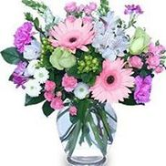 Anastasia's Flowers and Gifts, Spring Hill FL