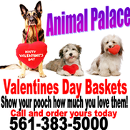 Animal Palace Pet Spa & Mobile Grooming, West Palm Beach FL