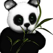 Panda Technology Group, Inc, West Harrison NY