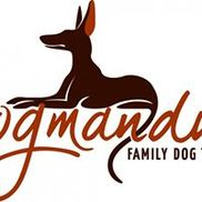 Dogmandu Family Dog Training, South Pasadena FL