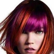 Alpha Hair Design Inc., Hillside IL