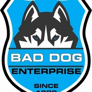 Bad Dog Home Inspections, Deerfield beach FL