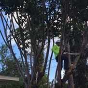 Mom and Sons Property Maintenance, Inc, WINTER PARK FL