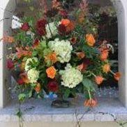 Floral Renaissance of Austin, Austin TX