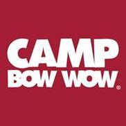 Camp Bow Wow, Elmhurst IL