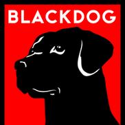 Blackdog Builders, Salem NH