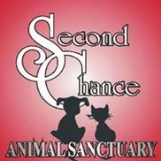 Second Chance Animal Sanctuary, Norman OK