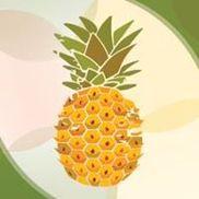 Island Organics Smoothie & Juice Bar, Venice FL