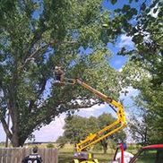Moore's Tree Service, Wichita KS