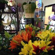 Jacksonville Florist Inc., Jacksonville FL