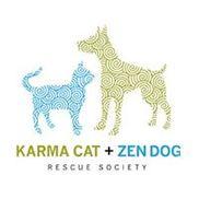 Karma Cat + Zen Dog Rescue Society, East Brunswick NJ