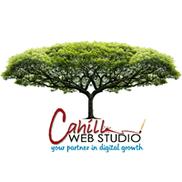 Cahill Web Studio, Campbell River BC