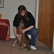 Happy PAWZ Pet Wellness, Champaign IL