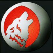 Wolf Data Direct Inc., Sarasota FL