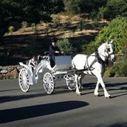 Wine Country Wedding Carriages, Cotati CA