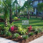 Bobcat Tractor Tree & Landscaping     Eager Beaver Stump Grinding, Naples FL