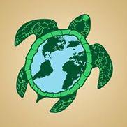 Turtles Yoga & Wellness, Beaverton OR