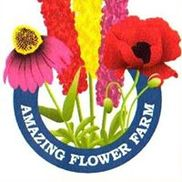 Amazing Flower Farm, New Ipswich NH