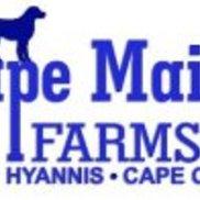 Cape Maid Farms, Hyannis MA