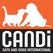 CANDi (Cats and Dogs International), Hauppauge NY