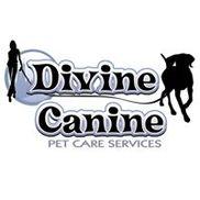 Divine Canine, Chicago IL