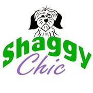 Shaggy Chic, Attleboro MA