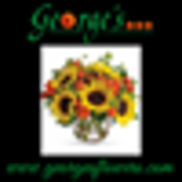 George's Flowers, Roanoke VA