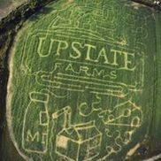 Cambria Corn Maze, Lockport NY